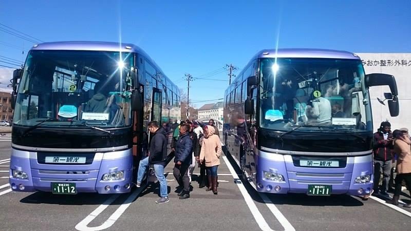 tourist_buses.jpg
